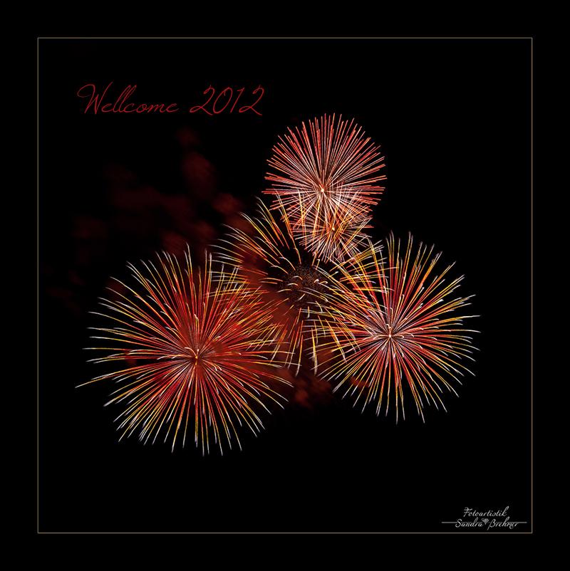 ~ goodbye 2011 - hallo 2012 ~
