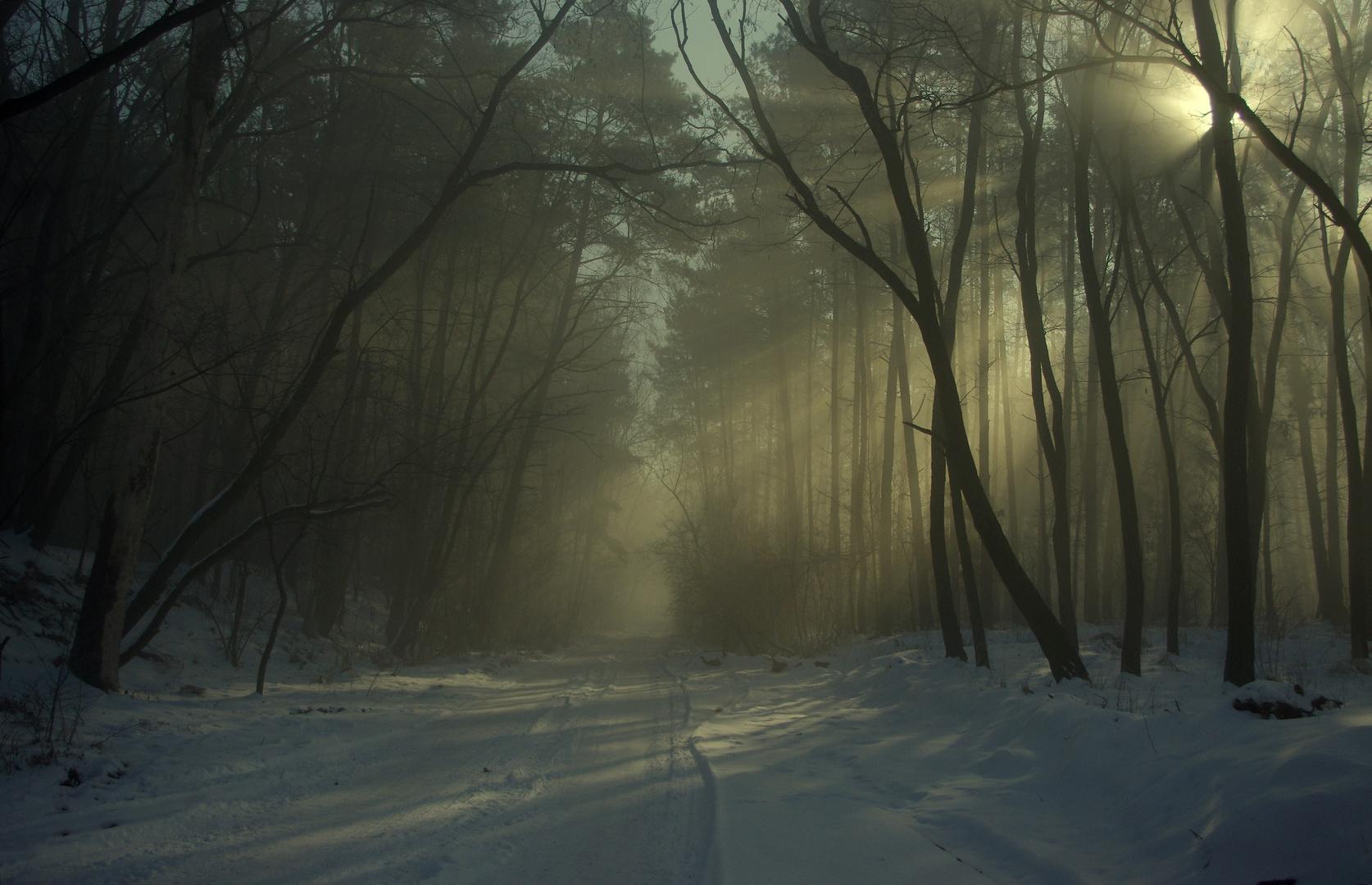 Goodbye  winter....