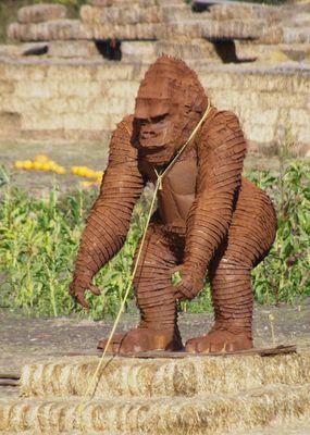 Gorilla an der Leine