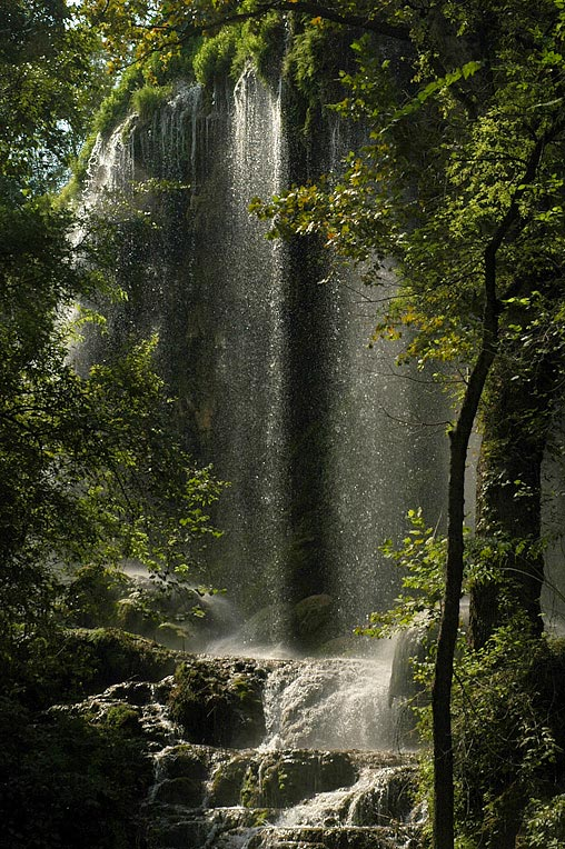 Gorman Falls I
