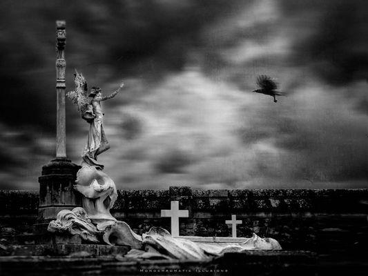 """""""Gothic Cemetery"""""""