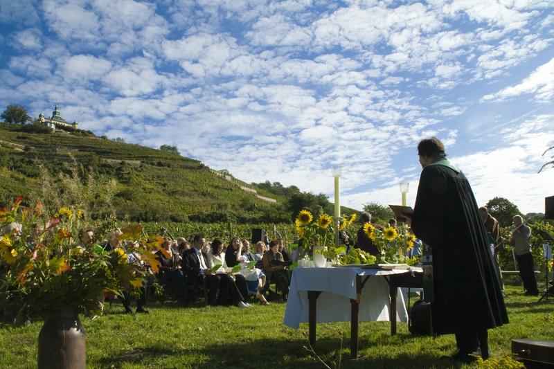 Gottesdienst im Weinberg