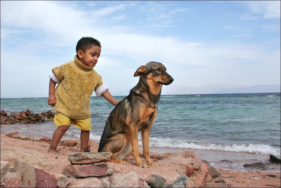 Govani und der Hund