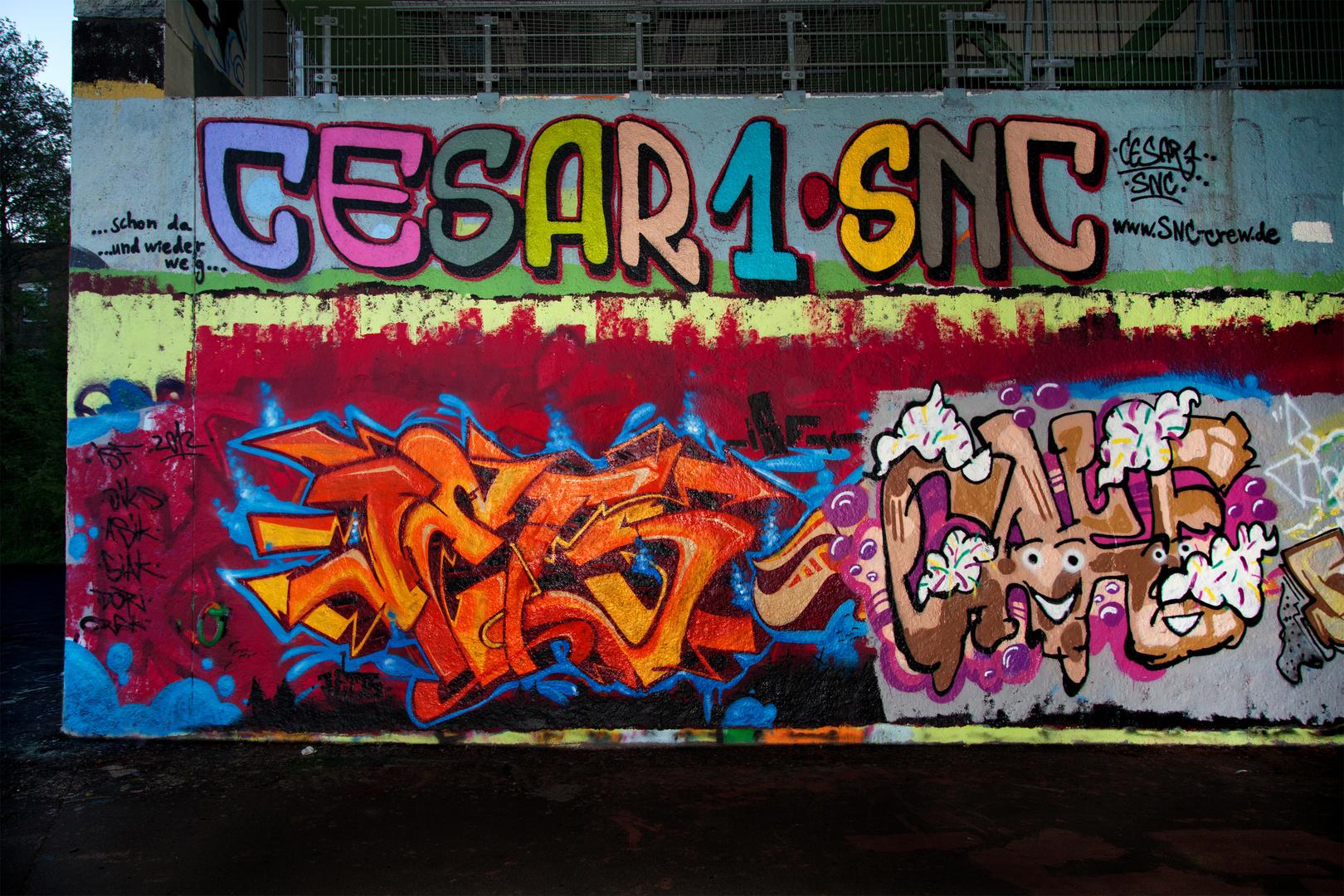 Graffiti an Skaterbahn Heidelberg--2