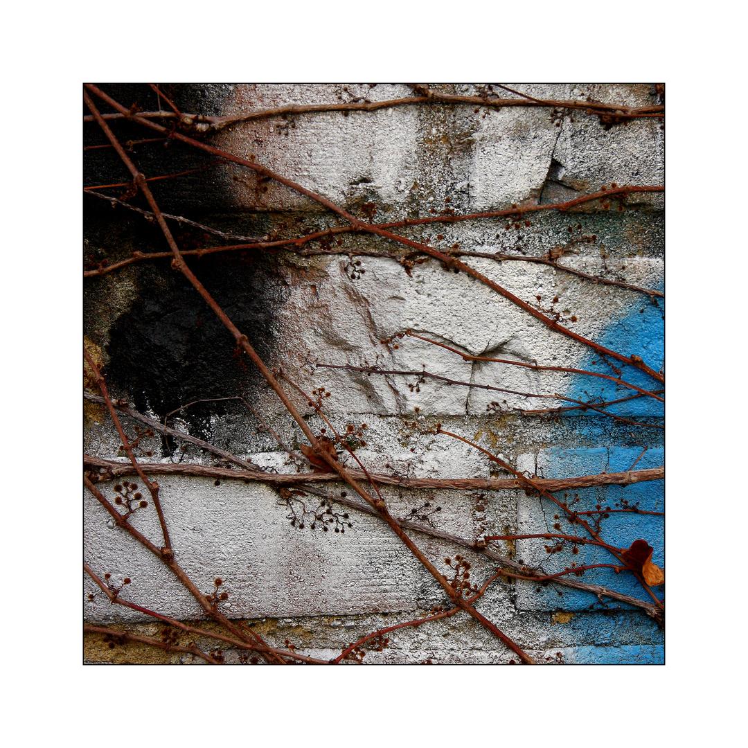 Graffiti vs. Natur #2