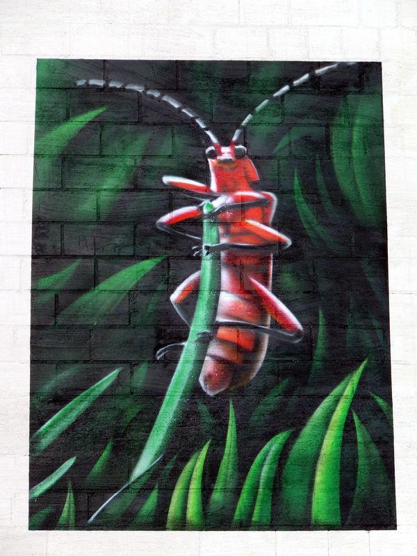 Graffitti 2