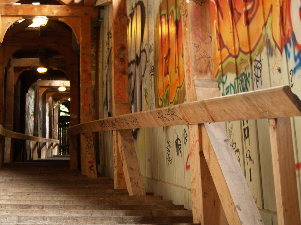 Graffity Gang