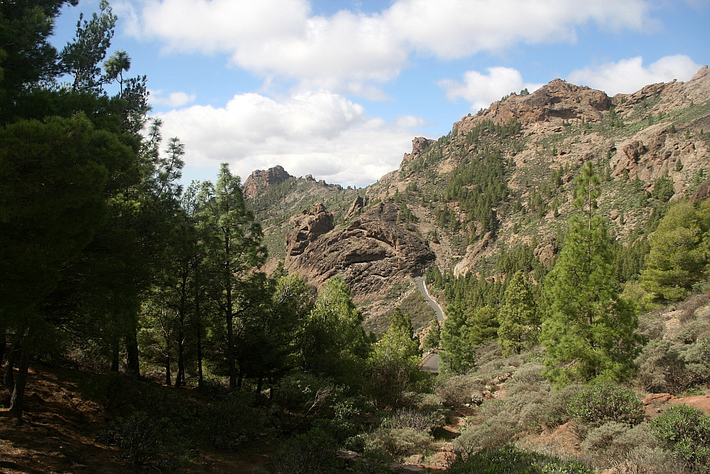 Gran Canaria: In den Bergen