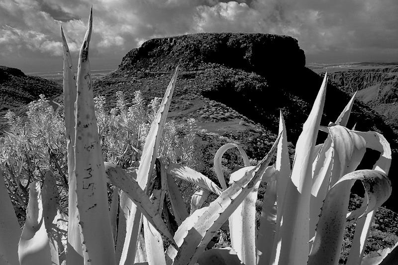 Gran Canaria - Landschaft