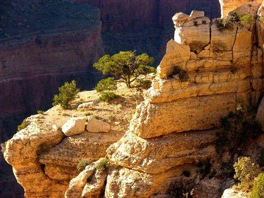 Gran Canyon im Sonnenlicht