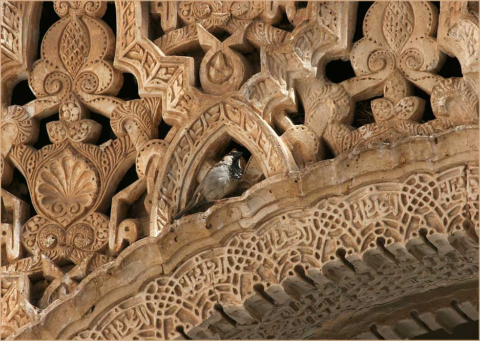 Granada Alhambra 4