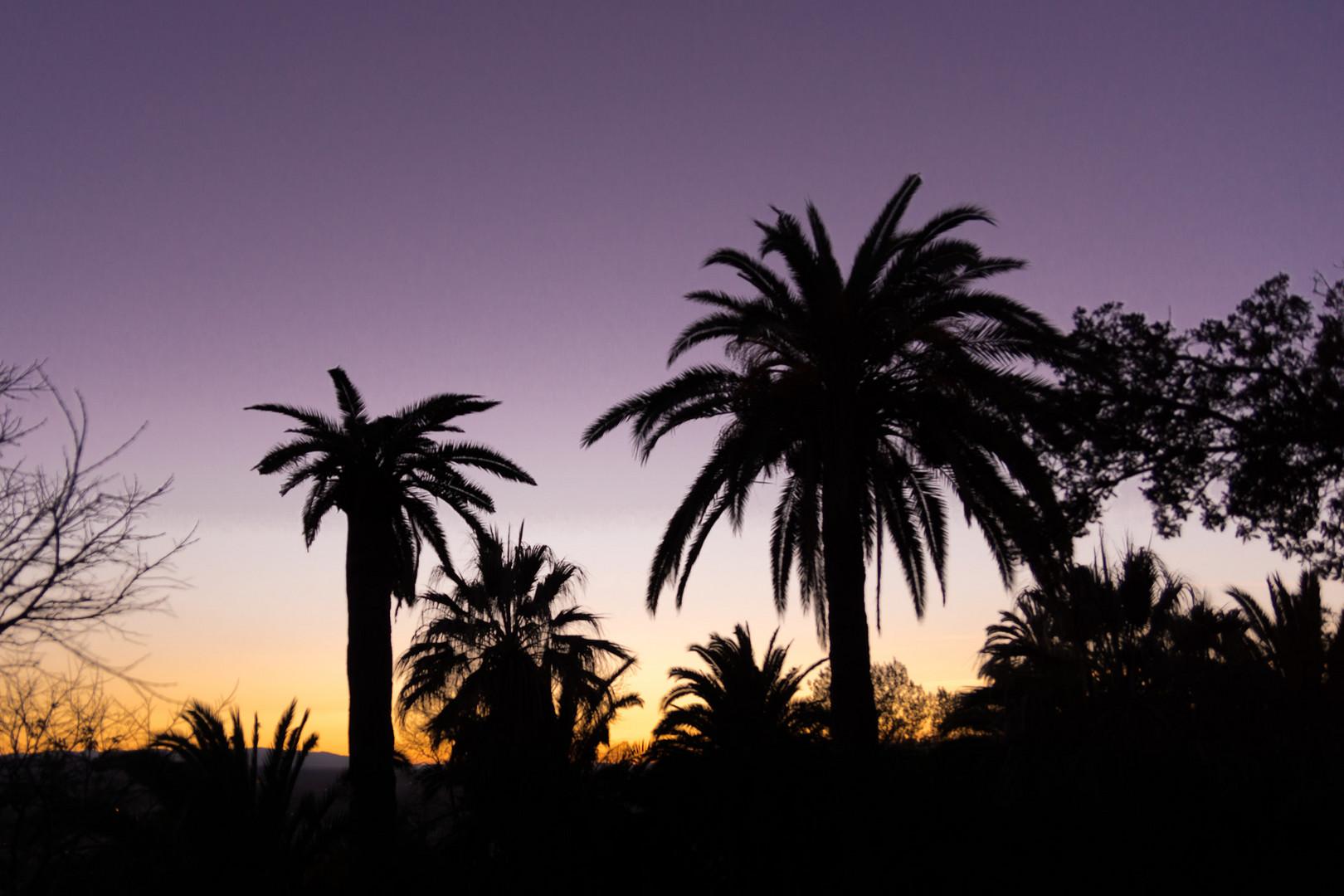 Granada am Abend