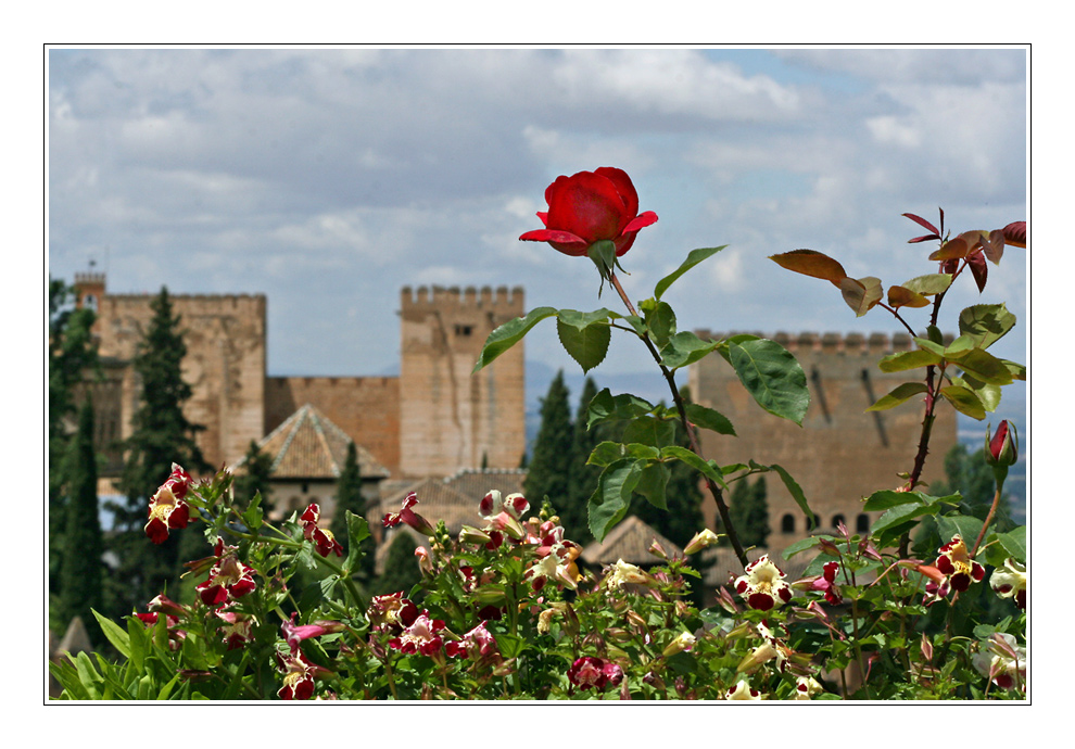 Granada - Mi Amor