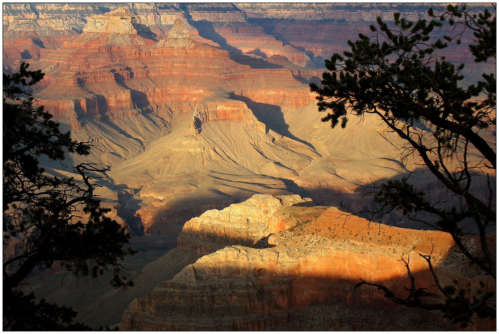 Grand Canyon # 11