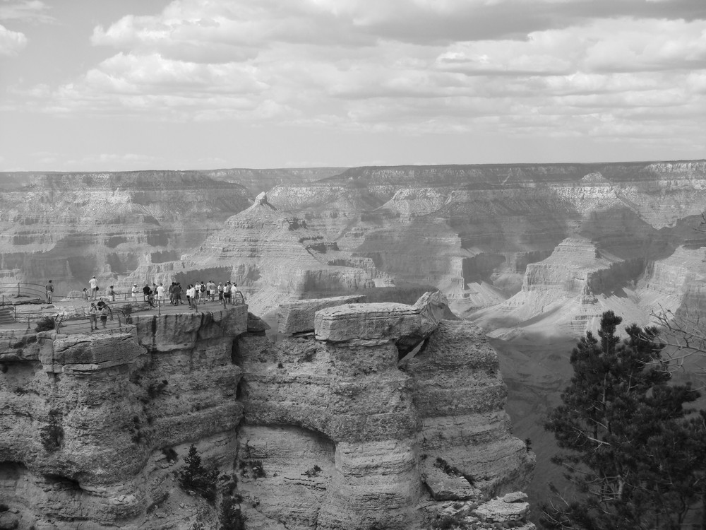 Grand Canyon B&W