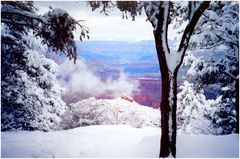 Grand Canyon .....