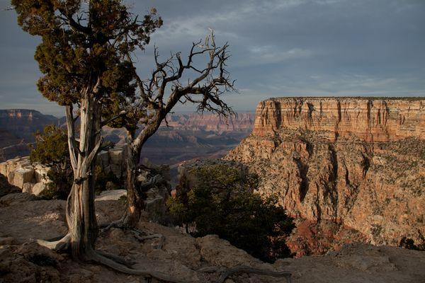Grand Canyon in Dämmerstimmung