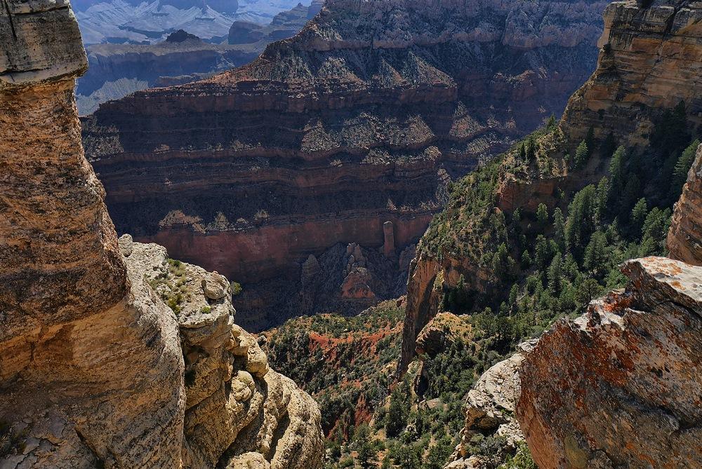 grand canyon nationalpark tief hinab geblickt in die. Black Bedroom Furniture Sets. Home Design Ideas
