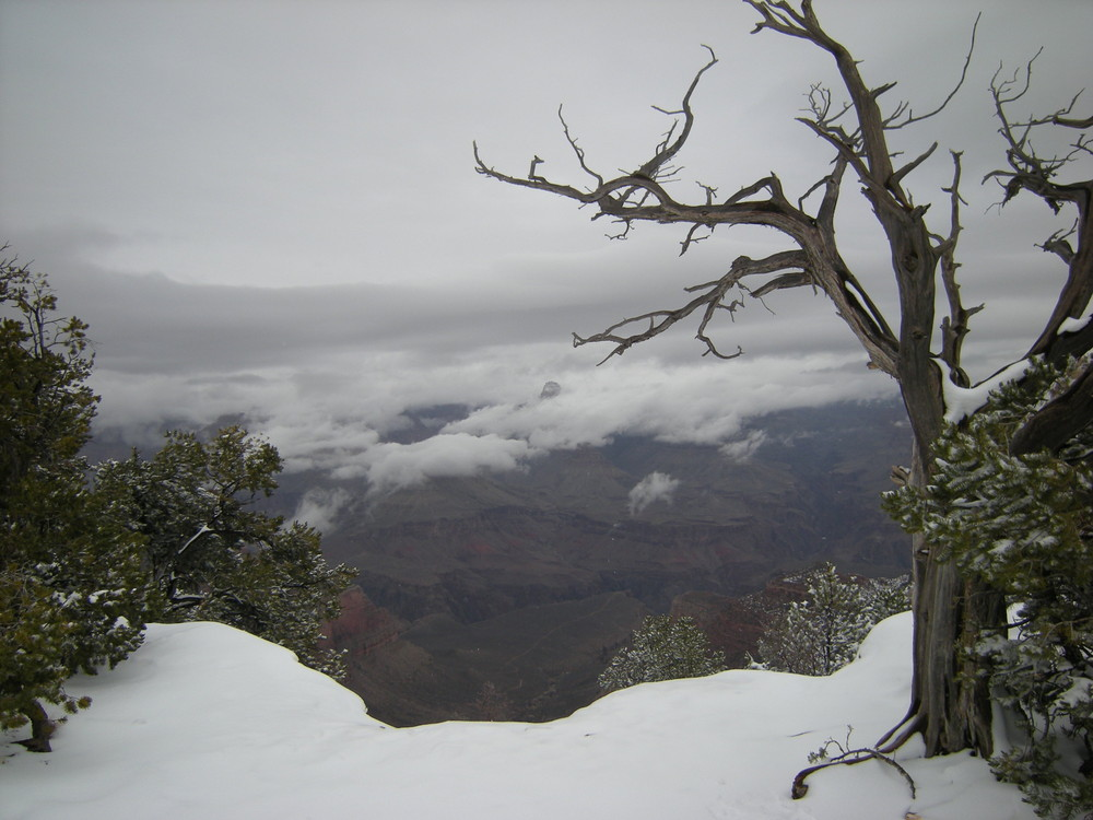 Grand Canyon (winterlich 1)