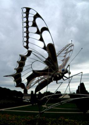 Grand Papillon filiforme dans le ciel du Château de Gilly - Bourgogne... 2