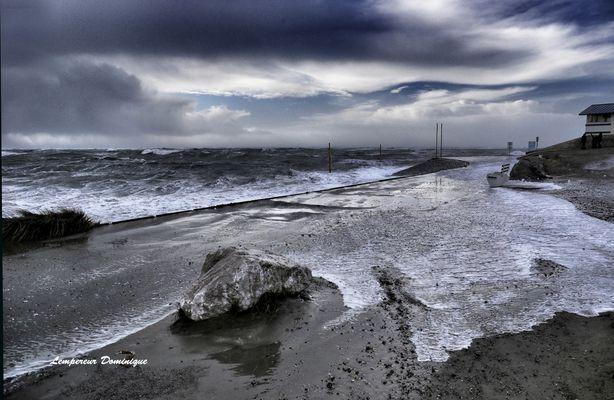 grande marée en baie d' authie