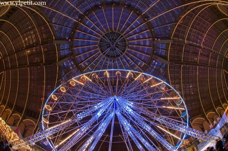 Grande roue au grand Palais