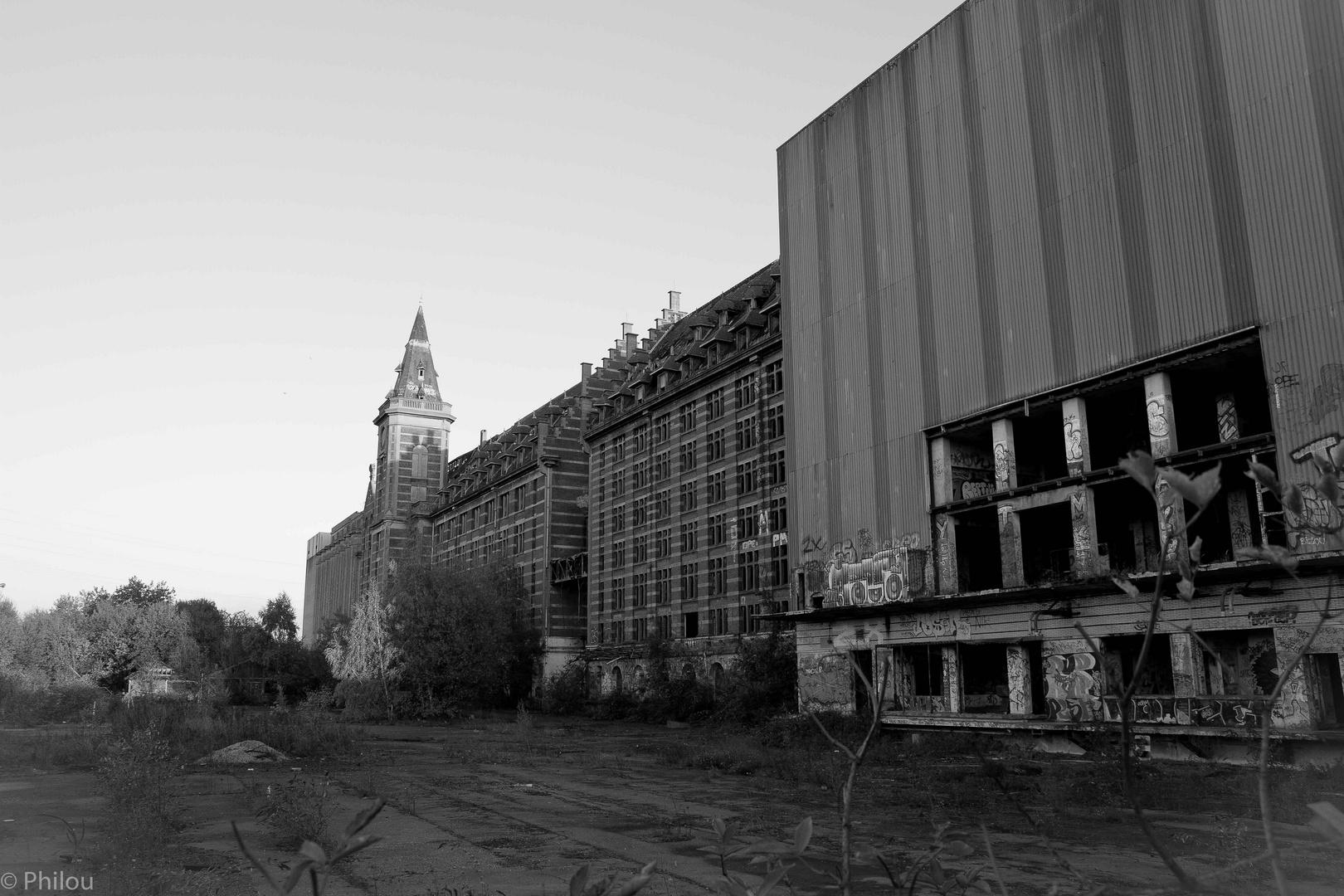 Grands moulins de paris à Lille 4