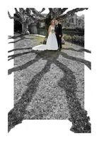 graphic wedding