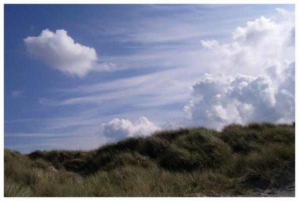 Gras, Himmel und Wolken