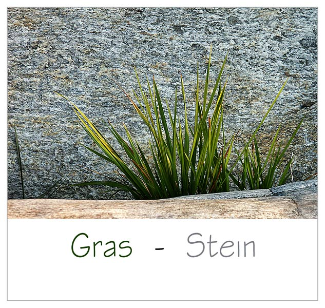 Gras - Stein