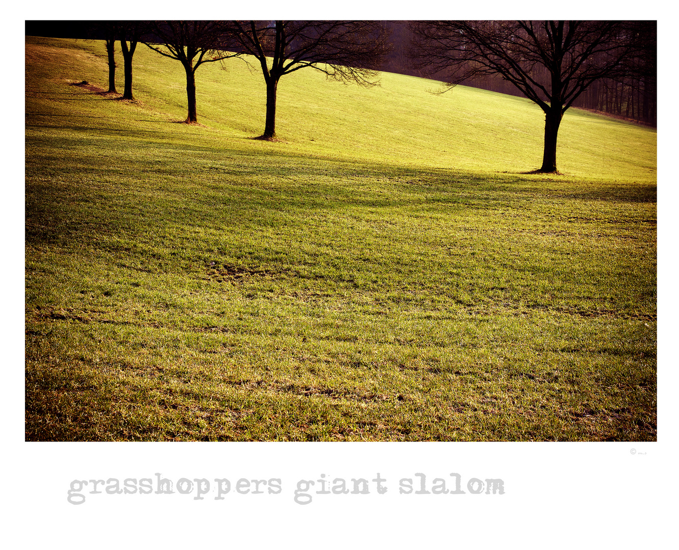 ~ grasshoppers giant slalom ~