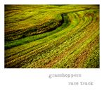 ~ grasshoppers race track ~