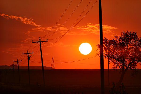 Grassland - South Dakota