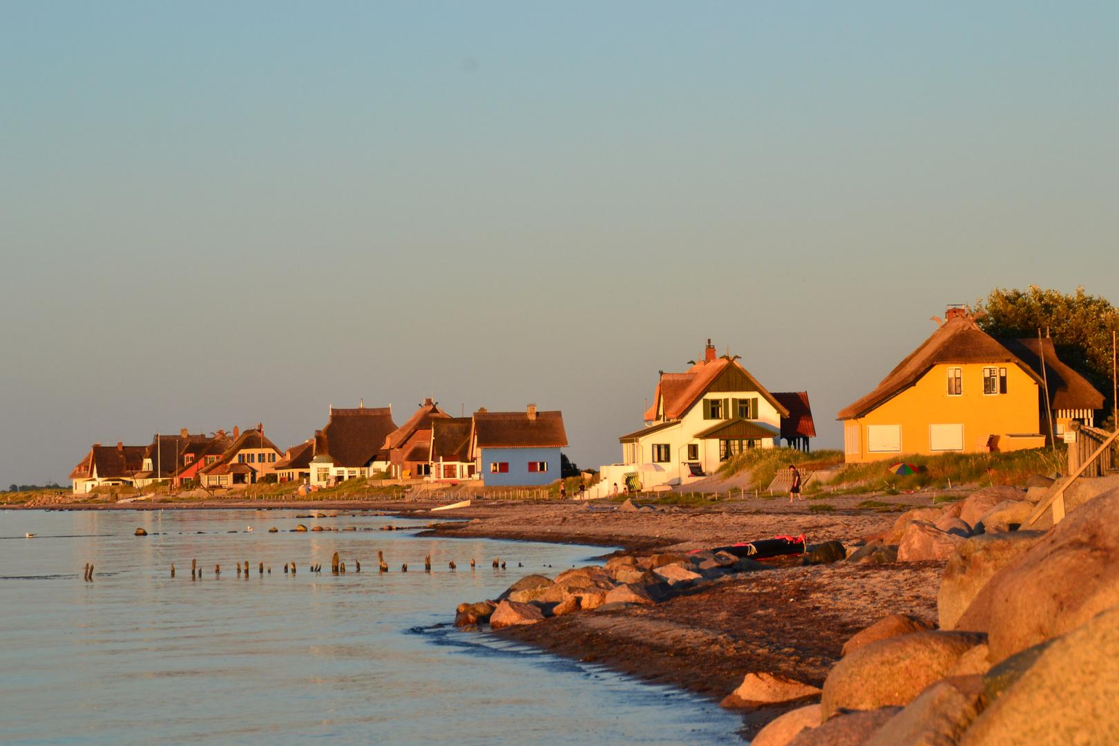 Graswader in Heiligenhafen an der Ostsee