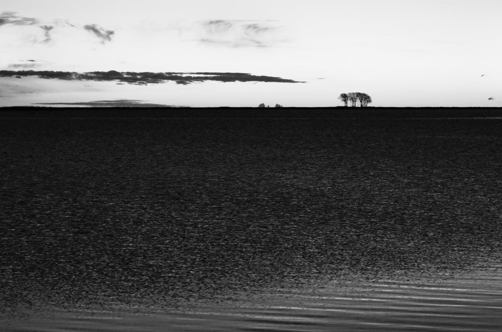 graue landschaft ..