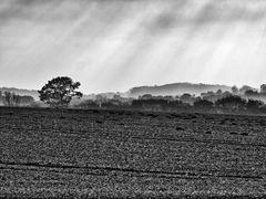 graue landschaft ...