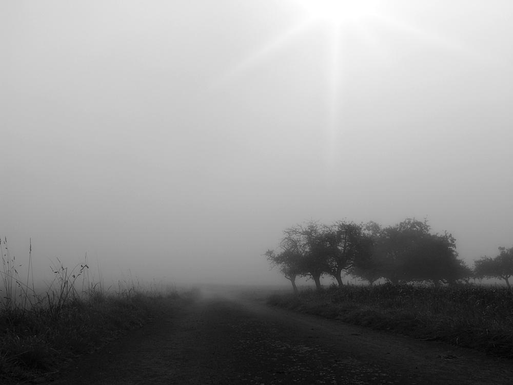 graue Nebel wallen