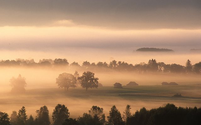 Graue Nebel wallen ...