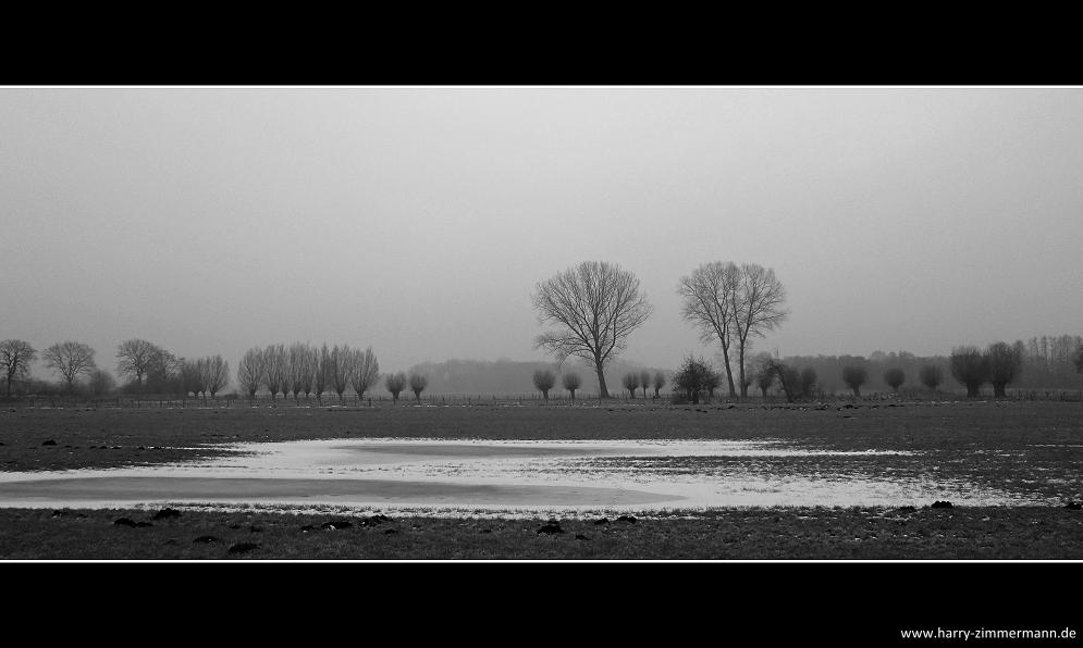 Graue Tage