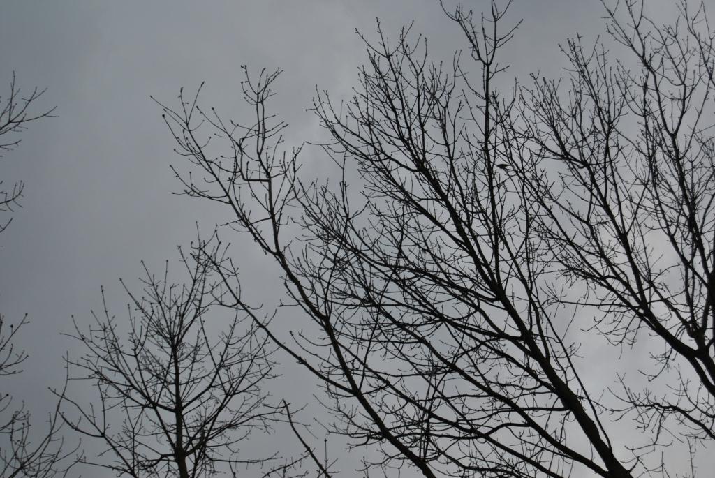 Grauer Himmel über Neuss