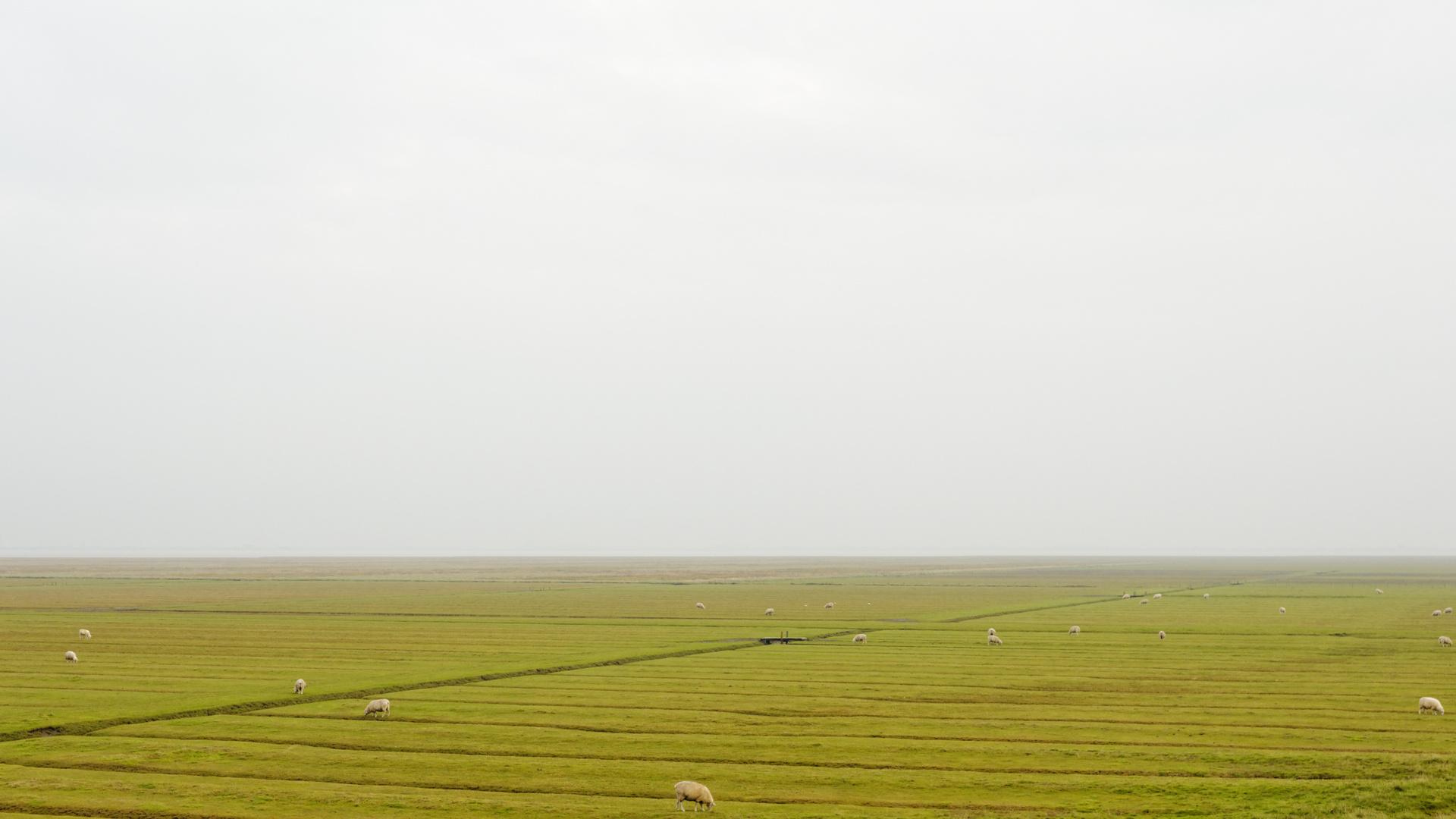 Grauer Tag auf Nordstrand