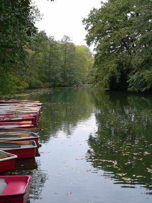 Grauer Tag im Berliner Tiergarten -1-