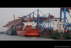 Grauer Tag im Hafen