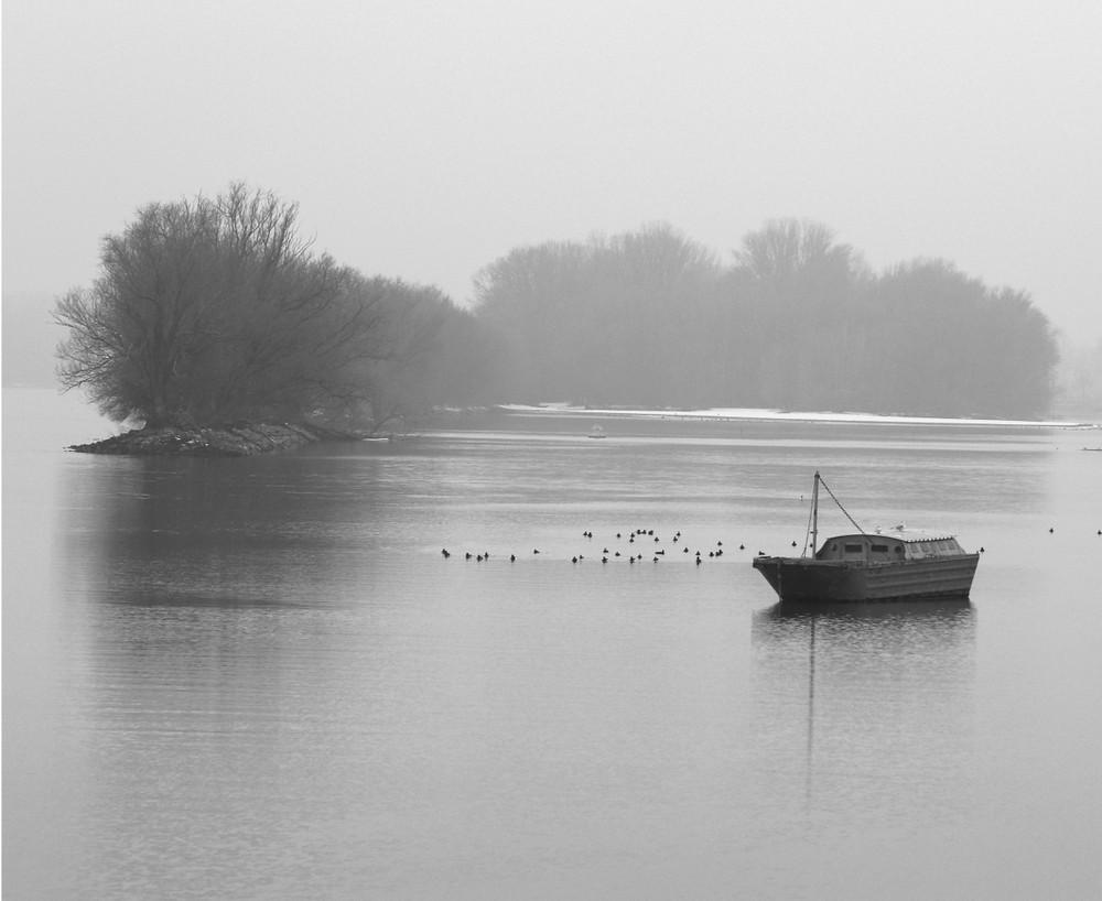 Grauer Wintertag am Rhein