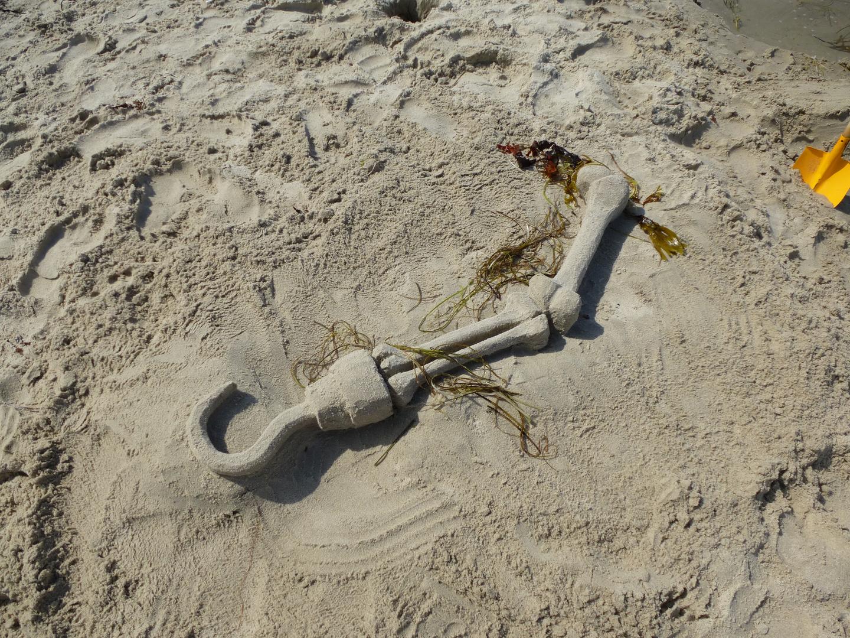 Grausiger Strandfund