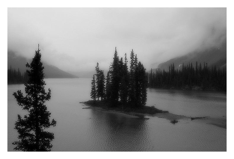 gray silence