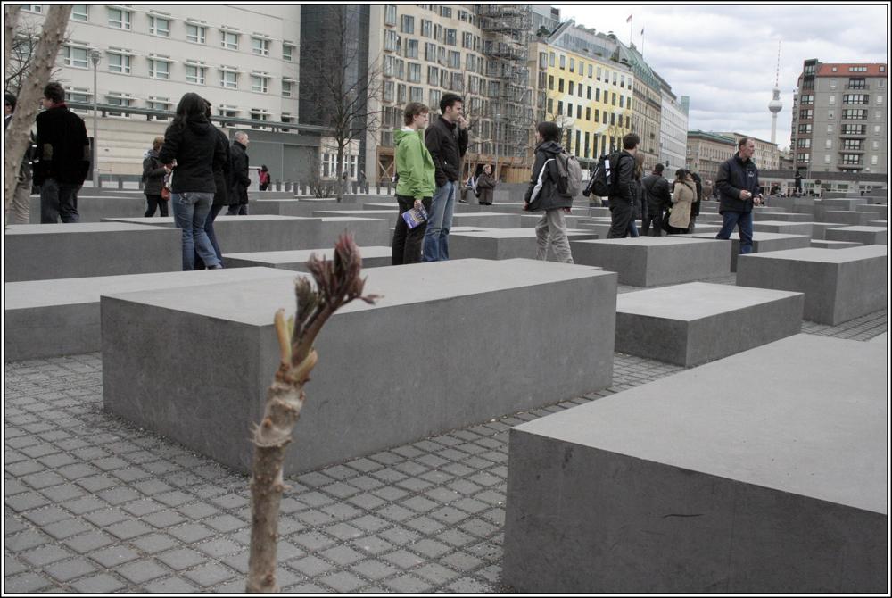 Grdanken nach dem Besuch der Holocaust Gedenkstätte