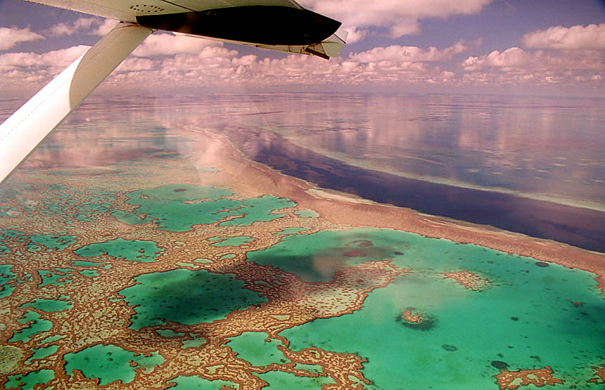 Great Barrier Reef - Mein Traum
