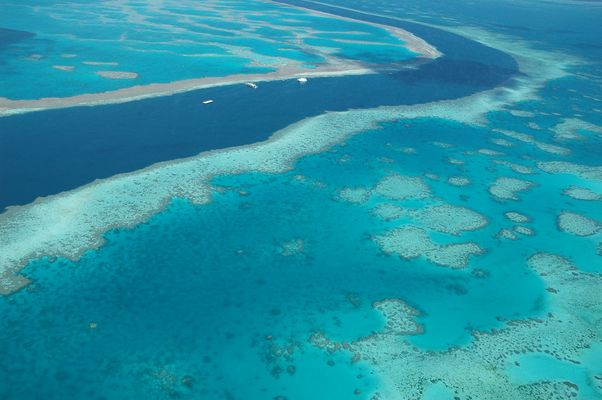 Great Barrier Reef vom Helikopter aus