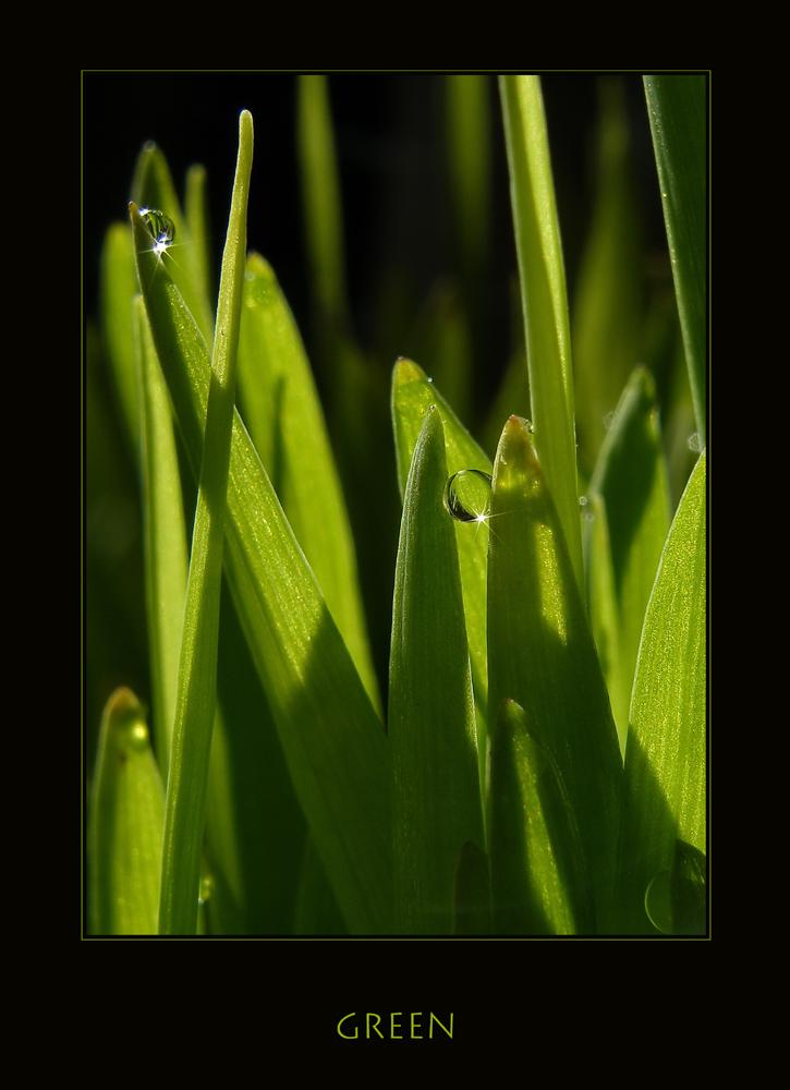 *green*